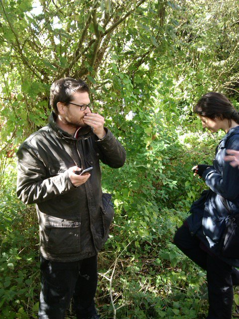 image of engaging your senses while wild food foraging