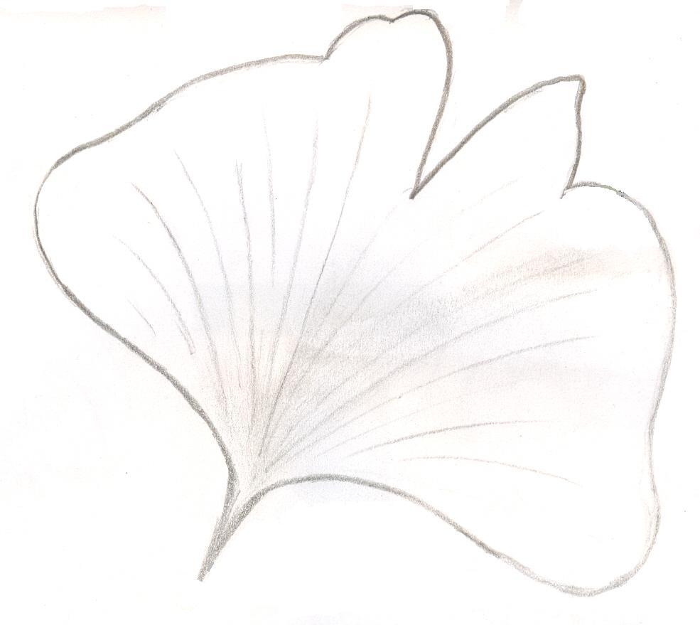 flagellate_2[1]